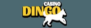 Casino Dingo logo