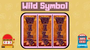 wild symbol slots