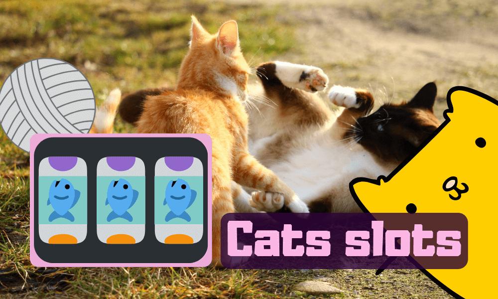 Cats slots