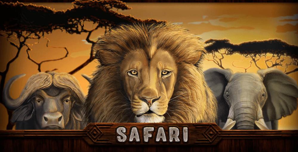 Safari slot