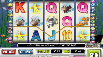 Dolphin Slot Games